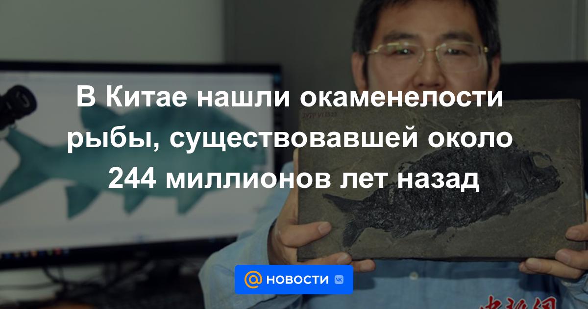 В Китае нашли окаменелости рыбы, существовавшей около 244 миллионов лет назад