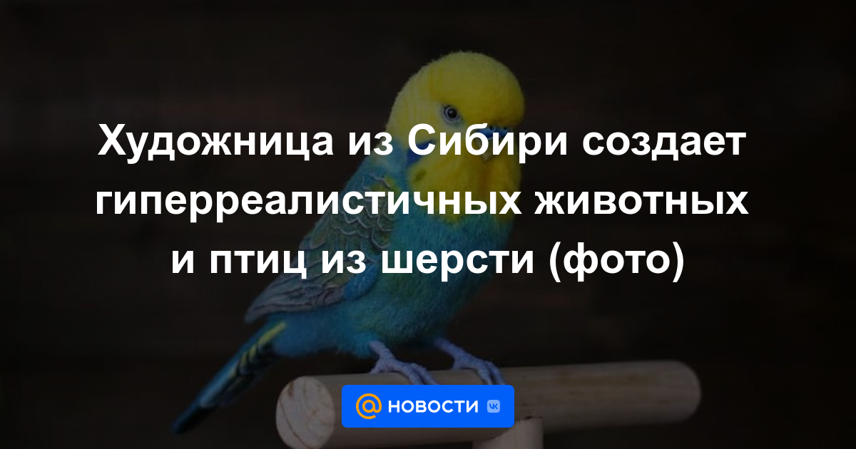 Художница из Сибири создает гиперреалистичных животных и птиц из шерсти (фото)