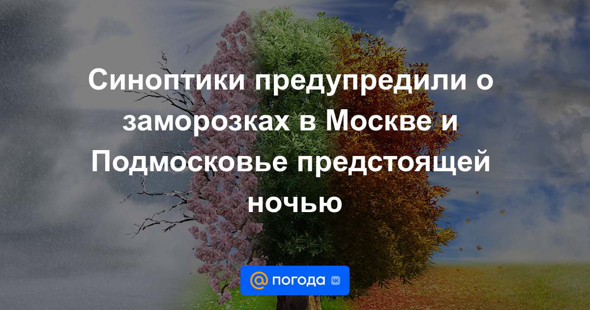 Синоптики предупредили о заморозках в Москве и Подмосковье предстоящей ночью
